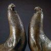 Elephant Seals (Beachmasters) by Nick Bibby