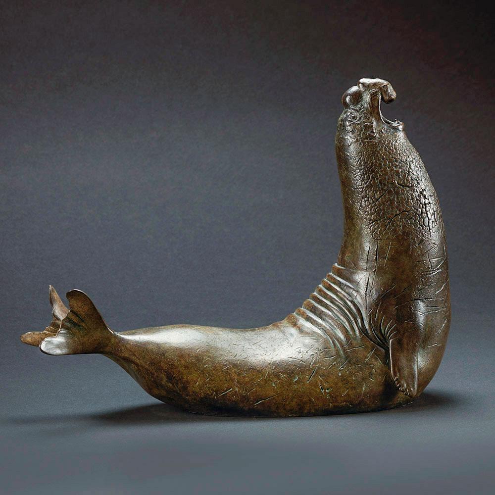 Elephant Seal 2 by Nick Bibby