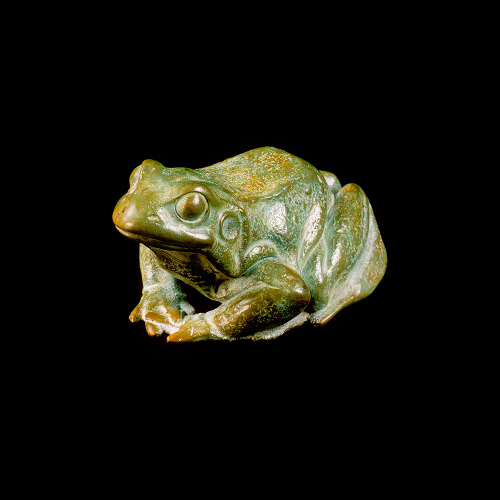 Frog by Nick Bibby