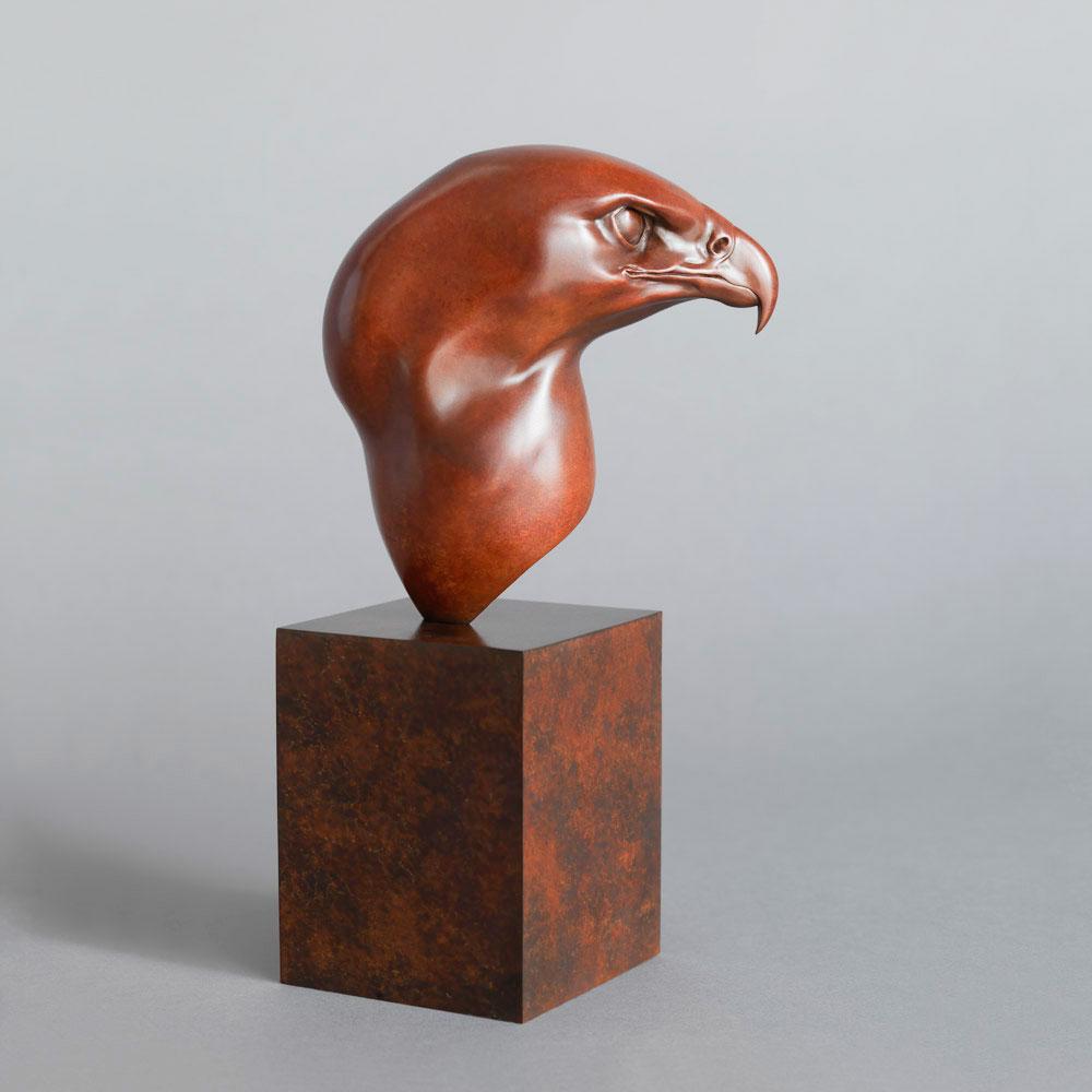 Golden Eagle Head by Nick Bibby
