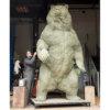 Kodiak Brown Bear (Indomitable) by Nick Bibby - In Progress