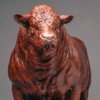 Red Ruby Devon Bull (Yeomadon Ferdinand) by Nick Bibby