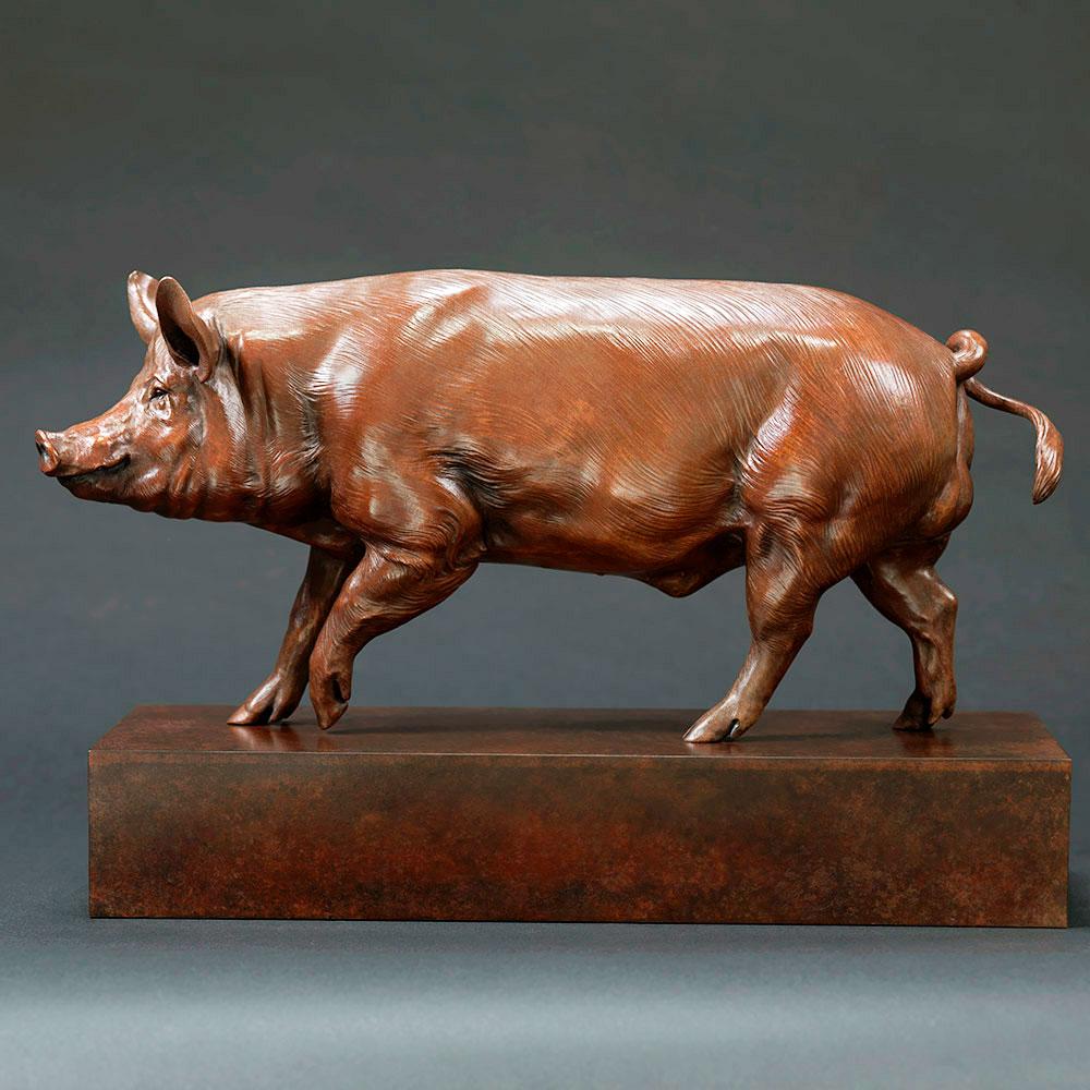 Tamworth Pig (Crane Glen III) by Nick Bibby