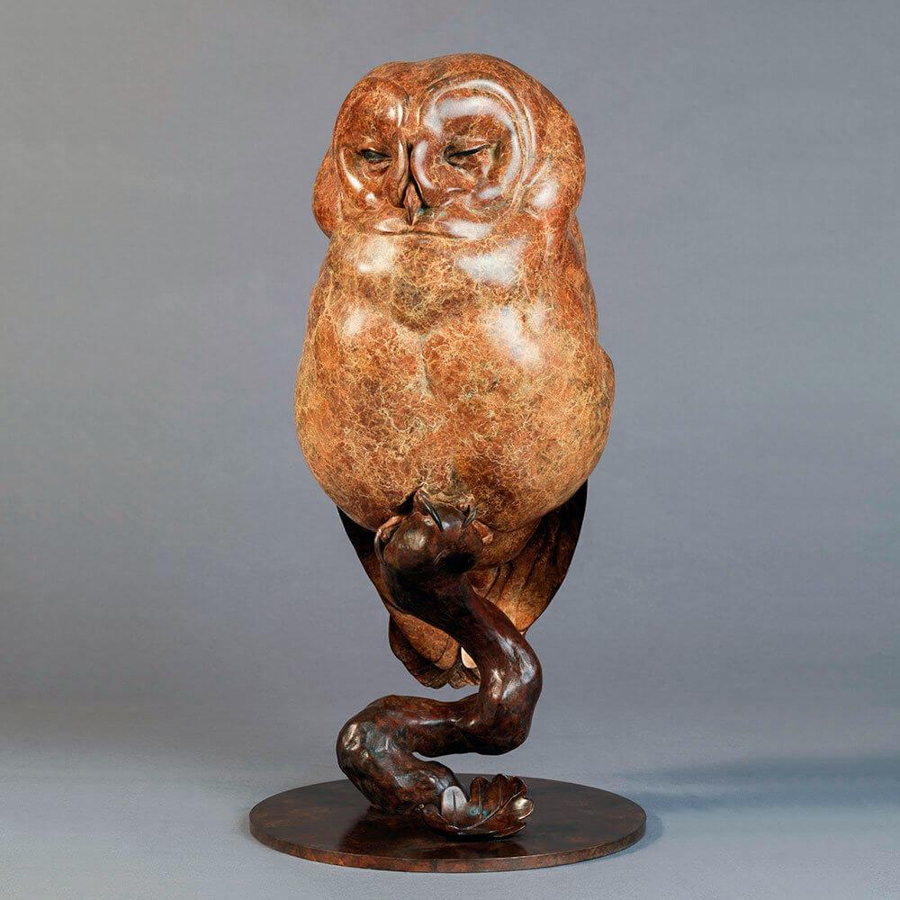 Tawny Owl by Nick Bibby