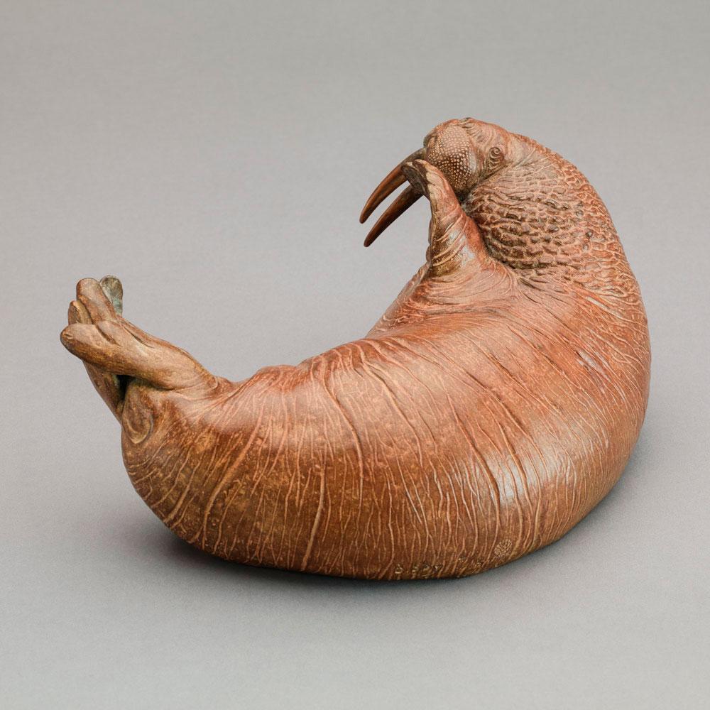 Walrus by Nick Bibby