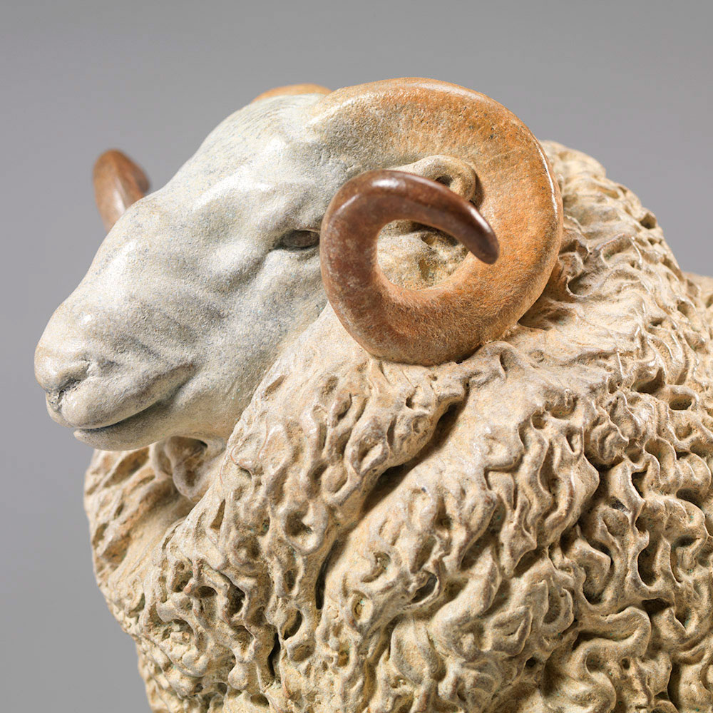 Whiteface Dartmoor Sheep (William) by Nick Bibby