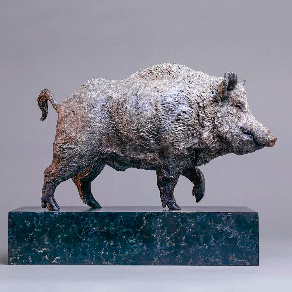 Wild Boar by Nick Bibby