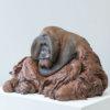 Life Size Sumatran Orangutan by Nick Bibby