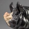Berkshire Pig (Dittisham Lady 22) by Nick Bibby