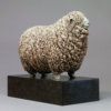 Devon and Cornwall Longwool Sheep (ED) by Nick Bibby
