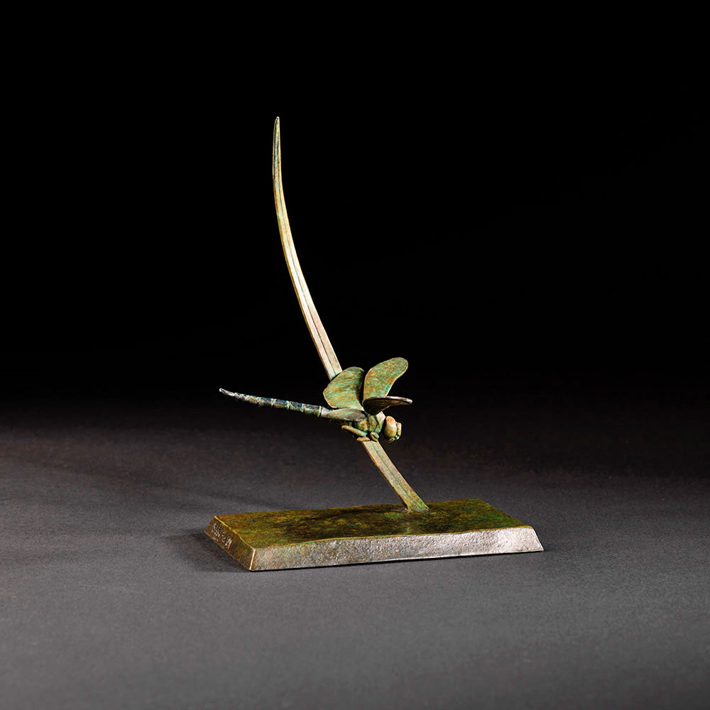 Dragonfly by Nick Bibby