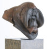 "Orangutan Bust ""Old Man of the Woods"" by Nick Bibby"