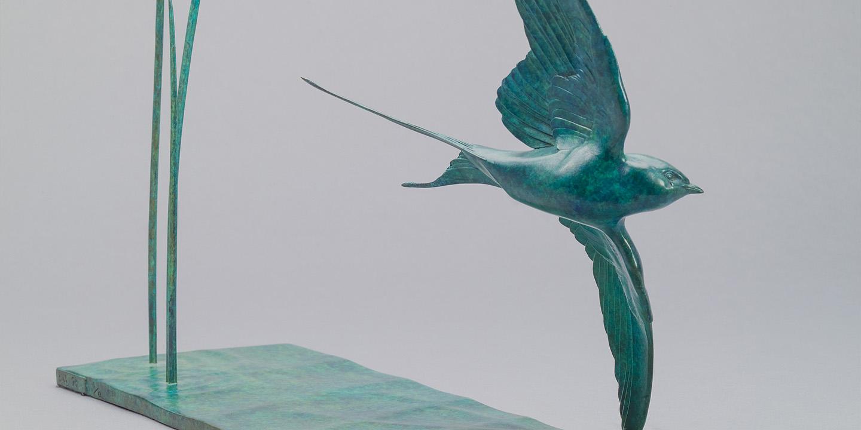 Link To Swallow in Flight