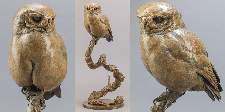 Link To Little Owl II