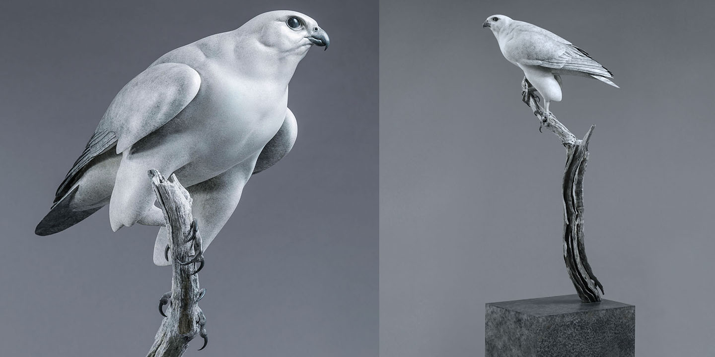 Link To Gyrfalcon