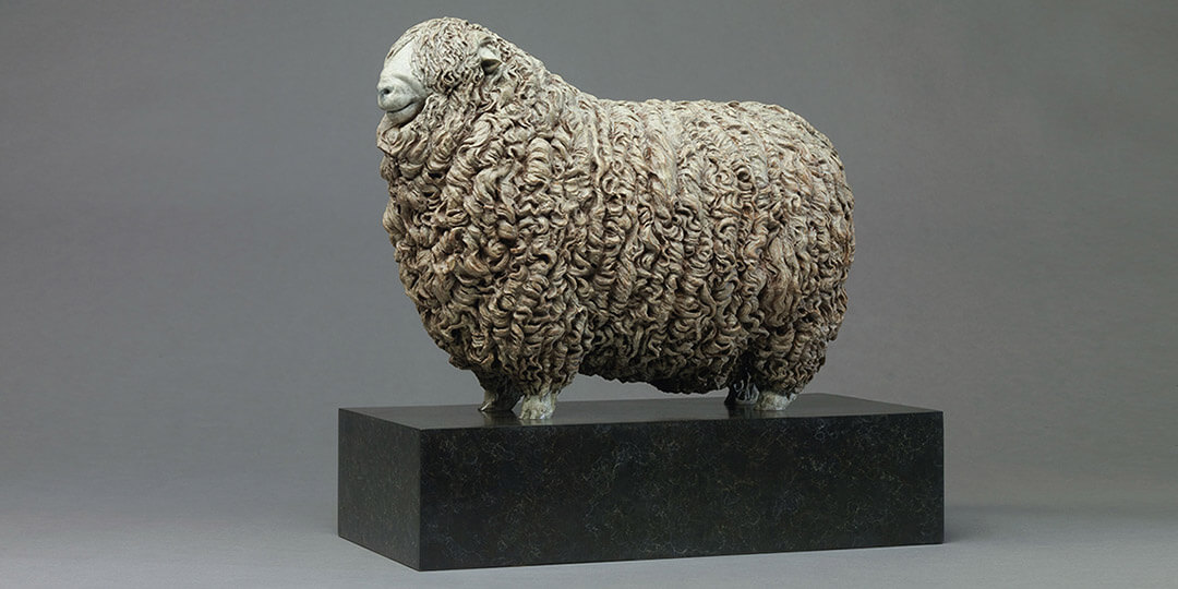 Link To Whiteface Dartmoor Sheep - William