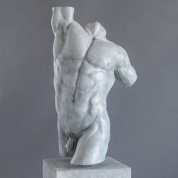 Apollo: Heroic Male Torso