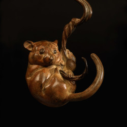 Dormouse II (Climbing) by Nick Bibby