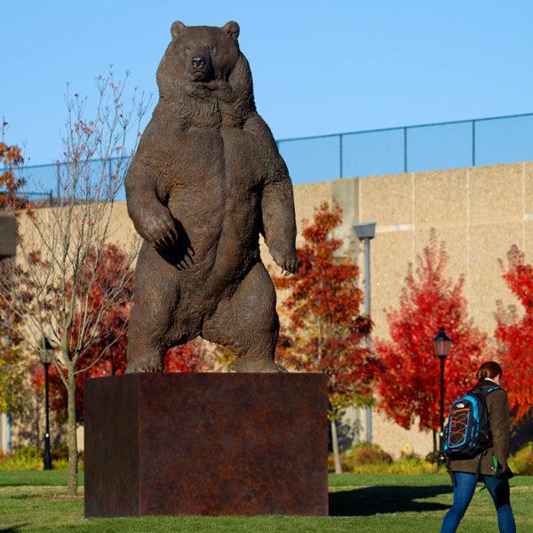 Kodiak Brown Bear (Indomitable) by Nick Bibby