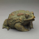 Lucky Toad by Nick Bibby