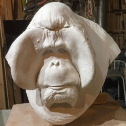 ORANGUTAN OLD MAN OF THE WOODS (LIFE-SIZE BUST)